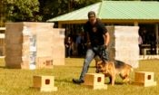 k-9 academy 2014 BLOG ENTRY