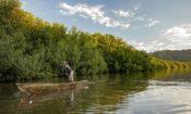 Un pescador en los manglares